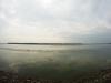 2015 rugpjūtis. KMRP. Marių pakrantė prie Vieškūnų piliakalnio